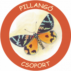 Pillango